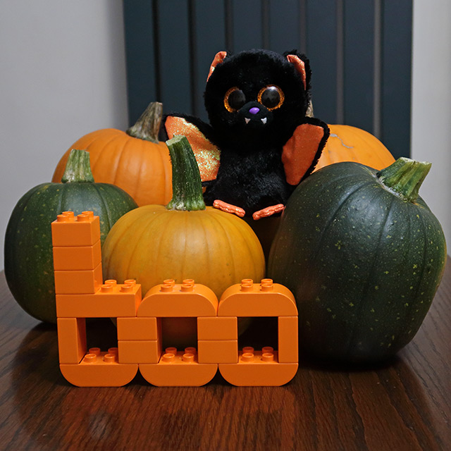 Five ripening pumpkins with a TY bat toy